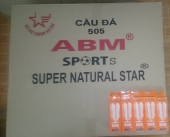 Cầu Phong Trào ABM 505